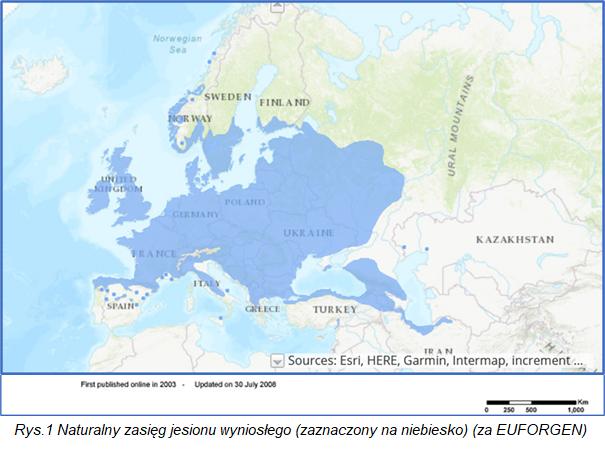 Mapa z zaznaczonym na niebieski zasięgiem jesionu wyniosłego - m.in. Francja, Niemcy, Polska, Ukraina, UK